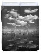Into The Everglades Duvet Cover