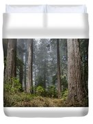 Into The Redwood Forest Duvet Cover