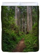 Into The Redwoods Duvet Cover