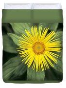 Inula Grandiflora Duvet Cover