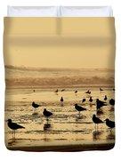 Iquique Chile Seagulls  Duvet Cover