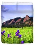 Iris And Flatirons Duvet Cover