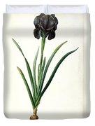 Iris Luxiana Duvet Cover by Pierre Joseph  Redoute