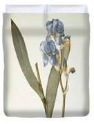 Iris Pallida Duvet Cover by Pierre Joseph Redoute