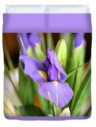 Iris Unfolding II Duvet Cover
