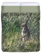 irish Hare Duvet Cover