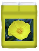 Island Bush Poppy In Rancho Santa Ana Botanic Garden In Claremont-california  Duvet Cover