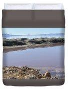 Island In The Desert Duvet Cover