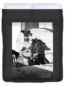 Italian Greyhounds In Black And White Duvet Cover