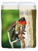 I've Got An Itch - Ruby-throated Hummingbird Duvet Cover