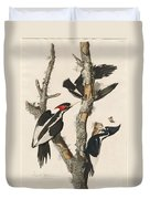 Ivory-billed Woodpecker Duvet Cover