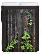 Ivy On Fence Duvet Cover