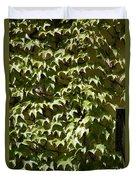Ivy Sunlight Duvet Cover