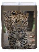 Jaguar On The Prowl Duvet Cover