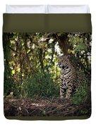 Jaguar Sitting In Trees In Dappled Sunlight Duvet Cover