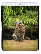 Jaguar Walking Through Muddy Shallows Towards Camera Duvet Cover