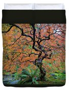 Japanese Garden Lace Leaf Maple Tree In Fall Duvet Cover