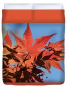 Japanese Maple In Sunlight Duvet Cover