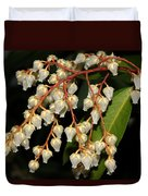 Japanese Pieris 2011-1 Duvet Cover