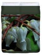 Japanese Pieris 2011-4 Duvet Cover