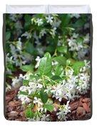 Jasmine In Bloom Duvet Cover