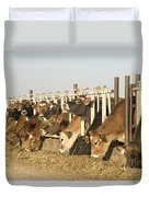 Jersey Cows Feeding Duvet Cover