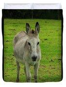 Jerusalem Donkey On A Farm Duvet Cover