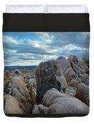 Joshua Tree Boulder Sky Duvet Cover