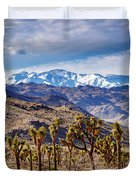 Joshua Tree National Park 2 Duvet Cover