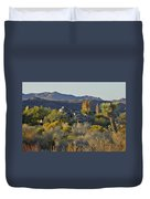 Joshua Tree National Park In California Duvet Cover by Christine Till