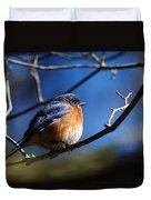 Juicy Male Eastern Bluebird Duvet Cover