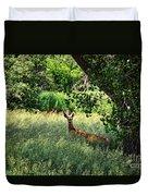 June Doe In Tall Grass Duvet Cover