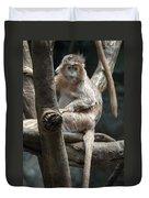 Jungle World Monkey2 Duvet Cover