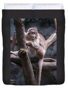 Jungle World Monkey3 Duvet Cover