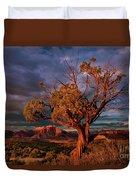 Juniper And Storm Back Of Zion National Park Utah Duvet Cover