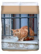 Just Curious Cat Duvet Cover