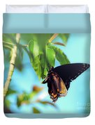 Just Hanging Out - Red-spotted Purple Butterfly Duvet Cover