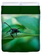 Just Looking For Another Beetle Duvet Cover