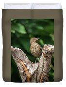 Juvenile Black Bird Turdus Merula Fledgling In Tree Stump In For Duvet Cover
