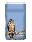 Juvenile Eagle 2015-7 Duvet Cover