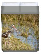 Juvenile White Ibis In The Everglades Duvet Cover