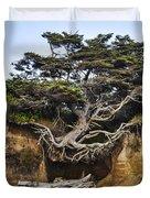 Kalaloch Hanging Tree Duvet Cover