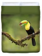 Keel Billed Toucan Perched On A Branch In The Rain Forest Duvet Cover