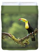 Keel-billed Toucan Perched Under The Rai Duvet Cover
