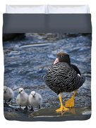 Kelp Goose With Goslings Duvet Cover