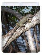 Key West Iguana In Mangrove 3 Duvet Cover