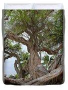 Kiawe Tree Duvet Cover