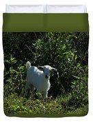 Kid Goat On A Farm Duvet Cover