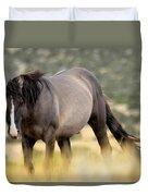 Kiger Stallion Duvet Cover