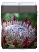 King Protea Island Flowers Jewel Of The Garden Duvet Cover